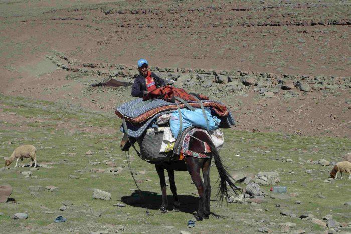 Voyager autrement au Maroc avec SESAM