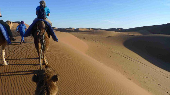 ROAD TRIP CIRCUIT ET 4X4 AU MAROC AVEC SESAM, desert