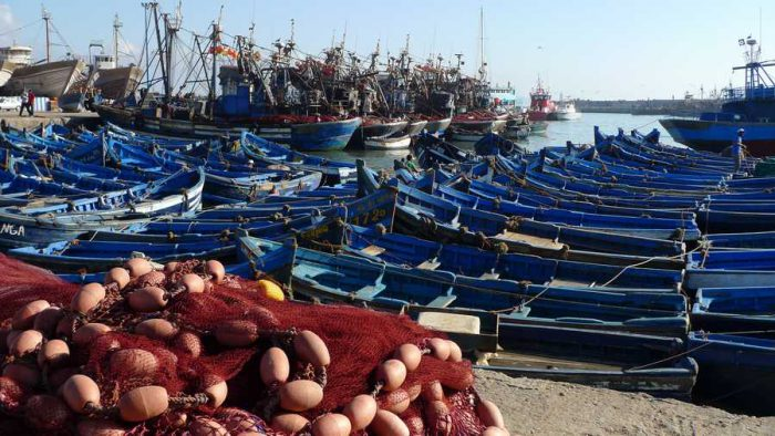 EXCURSION AU MAROC AVEC SESAM Essaouira